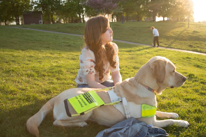 Guide Dogs Week Raffle and Blogging Campaign