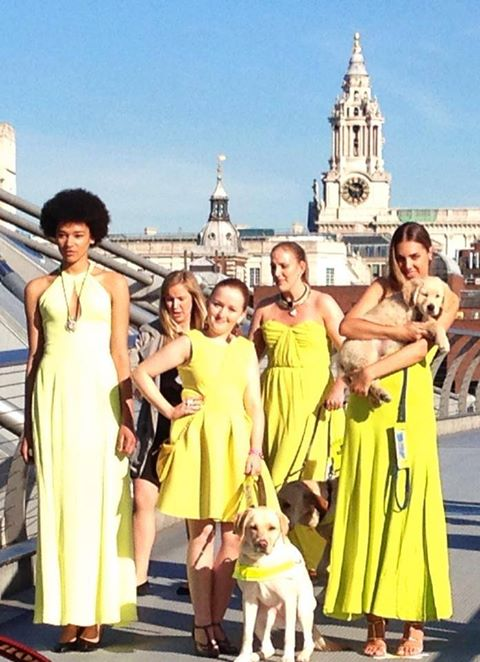 An image of guide dog owners with Amber Le Bon