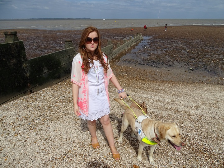 10 Fashion Life Hacks That Every Guide Dog Owner ShouldKnow